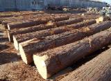 日本 - Fordaq 在线 市場 - 锯木, 柏木