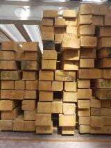 Cumpăra Sau Vinde  Bustean De Gater De Foioase - Cumpar Bustean De Gater Stejar