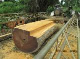 Fordaq - Piața lemnului - Vand Cherestea Tivită Afromosia , Bubinga , Wenge 100 mm in CENTRE