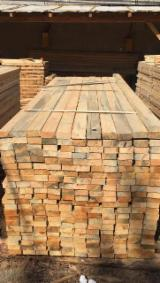 Find best timber supplies on Fordaq - 40 - 90 mm Air Dry (AD) Pine  - Scots Pine Squares from Poland