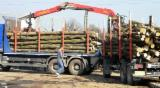 Find best timber supplies on Fordaq - -- cm Beech Firewood from Romania, Valcea