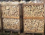 Brennholz aus Eiche, Hainbuche, Birke, Erle, Espe