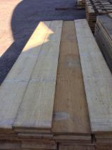 South America Sawn Timber - KD Elliotis Pine Sawn Timber, 20+ mm