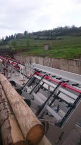 Maşini şi utilaje (noi/second hand), feronerie, produse de tratare a lemnului - Vand Statii Pentru Sortare Busteni Drevostroj Second Hand Slovacia