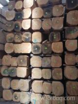 Drewno Iglaste  Drewno Klejone Warstwowo – Elementy Drewniane Łączone Na Mikrowczepy Wymagania - Deskowania Belki, Świerk  - Whitewood