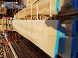 Belgium Supplies - Beech, Unedged Plank Boards