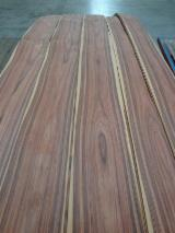 Finden Sie Holzlieferanten auf Fordaq - Holz-Schnettler Soest Import – Export GmbH - Santos Palisander Furnier