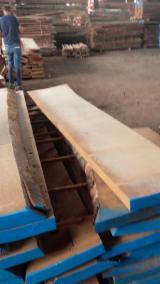 Belgium Supplies - KD Unedged Beech Timber, 38; 50 mm