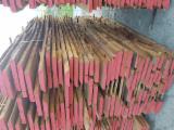 Belgium - Fordaq Online market - AD Loose Beech Timber, 25+ mm