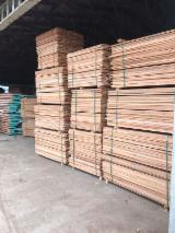 Belgium Supplies - KD Beech Sawn Timber, 25; 50 mm
