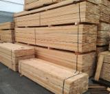 Exterior Decking  Solid Wood - DECKING: Siberian Larch (Larix Sibirica)