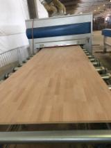 Turkey - Furniture Online market - Beech edge glued 1 ply panel