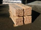 Stave Woods  Sawn Timber - Eucalyptus Stakes