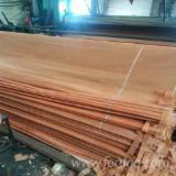 Furnierhandel - Laub Und Tropenholzfurnier - Keruing, Rundschälfurnier