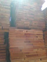 加彭 - Fordaq 在线 市場 - 木板, 筒状非洲楝木
