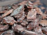 Energie- Und Feuerholz - Kiefer - Föhre Rinde
