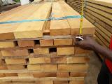 锯材及结构木材 非洲 - 木板, 绿柄桑木, 真空干燥