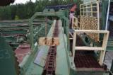 Offers USA - 50 FT. (SE-010298) (Sawmill)