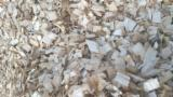 null - Wood Chips From Forest