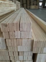 Radiata pine LVL for construction and furniture