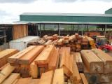Industrial Logs - Required South American Logs