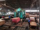 Indonesien - Fordaq Online Markt - Marines Sperrholz