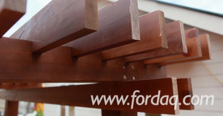 Radiata-Pine---Glulam-House---Glulam-Panels-from