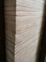 Vender Compensado Natural Abedul 12; 15; 18 mm China