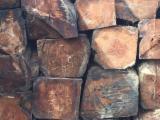 null - Stämme Für Die Industrie, Faserholz, Rhodesian Copalwood, African Rosewood
