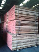 Hardwood  Unedged Timber - Flitches - Boules - Offer for Grade A Quality Unedged Beech Strips Half Edged Boards