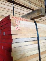 Sawn And Structural Timber Europe - Offer for Prime 6/4 White Oak Plank Boards