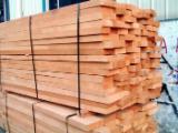 Offer for European White Beech lumber from Latvia
