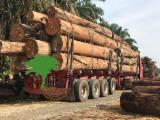 null - Offer for Malaysian Hardwood / Sawn Timber, 20-150 mm