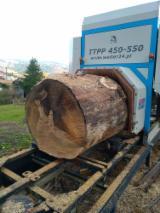 供应 法国 - 双刃原木材切锯机 FIRMA WALTER TTPP  全新 法国