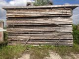 Hardwood  Unedged Timber - Flitches - Boules For Sale - Offer for Boules, Poplar- Germany