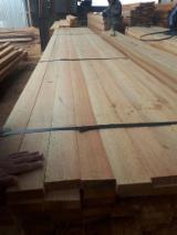 Nadelschnittholz, Besäumtes Holz - Schnittholz Sibirische Lärche radial cut