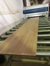 Veneer and Panels - Offer for 1 ply solid wood Beech Fingerjointed panels