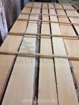 Hardwood  Unedged Timber - Flitches - Boules For Sale - Offer for Unedged Frame Birch Lumber - KD