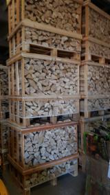 Algeria - Fordaq Online market - Beech, Hornbeam, Oak Firewood/Woodlogs Cleaved