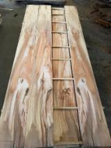 锯材及结构木材 - 木板