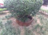 Garden Wood Tile Garden Products - Offer for Garden Circle Wooden edging HMG233/4-2306