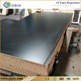Offer for 12 mm 18 mm Black film faced shuttering plywood /korinplex film faced plywood poplar timber