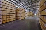 Veneer And Panels North America - Russian Birch Plywood 4'x8' EXT