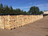 Energie- und Feuerholz - Brennholz gespalten in Kisten oder in 20 Liter Netz Säcken