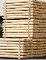 Kaufen Oder Verkaufen  Masten Weichholz  - Palisade