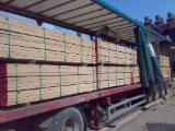 Wood Transport Services - Join Fordaq To Contact Wood Transporters - Cargo Transport To Austria