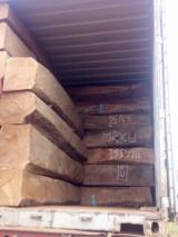 null - Square Logs, Afrikaans Palissander, Machibi, Copal Van Rhodesië, Doussie
