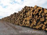 null - Zaagstammen, Cembran Pine, Swiss Pine