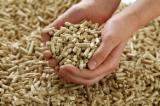 Estonia - Fordaq Online market - DINplus Birch, Beech, White Ash Wood Pellets 6 mm