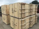 Chinese Commercial plywood ,bintangor plywood, 1220x2440mm